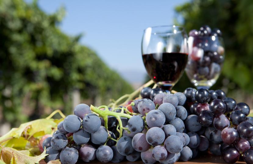 Wine&Food Tour